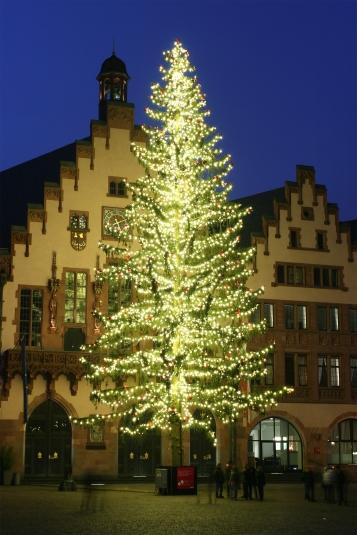 Weihnachtsbaum_Römerberg